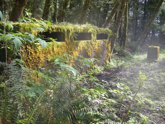 World War II Hidden Bunker