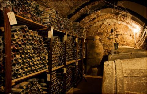 Spooky Wine Cellar In Elixa
