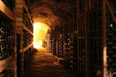 Wine Cellar In Elixa