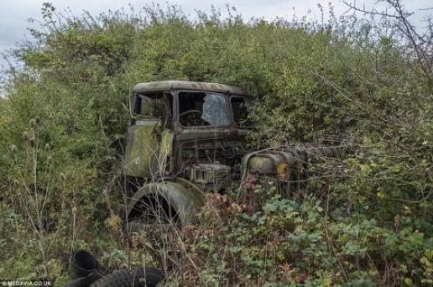 Decaying World War II Military Truck
